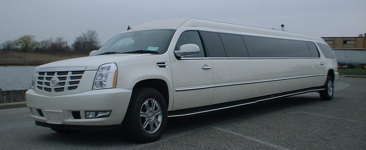 Why Floral Scents Work Best in Limo Buses